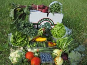 local harvest org